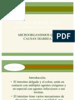 --Diarrea Producida Por Microrganismos