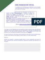 Guia Sobre Organizacion Textual