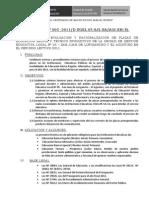 1_18-1-2011_directiva_racionalizacion[1]