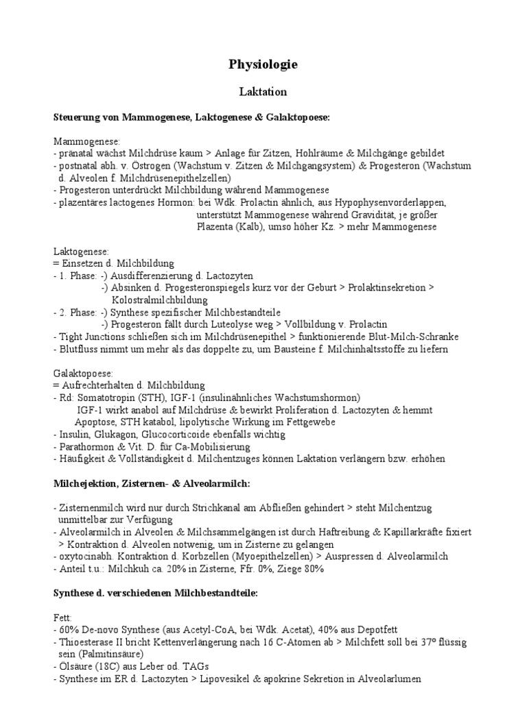 Fein Blutfluss In Der Leber Zeitgenössisch - Physiologie Von ...