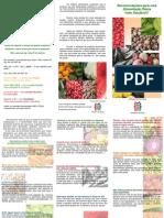 Recomendações para uma alimentação diária mais saudável_folheto