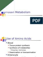 03 Protein Metabolism