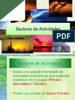 Sectores de Actividades