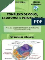 Aula 10 - Complexo de Golgi, Lisossomos e Peroxissomos