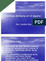 07_Formula Dentaria en El Equino