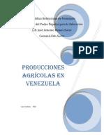 Producciones Agrícolas  en Venezuela