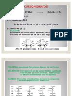Clase Enero 2010 Carbohidratos Pregrado