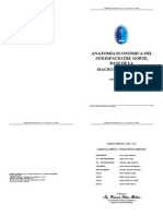 Anatomia Economica Del Sub Espacio Del Norte - Peru
