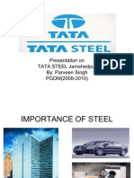 19800191 Presentation on Tata Steel
