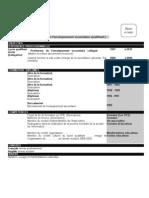 Exemple de CV Francais