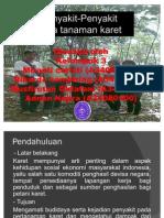 pengamatan penyakit perkebunan karet. IPB.