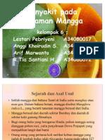 pengamatan penyakit perkebunan mangga. IPB.