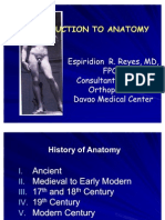 anatomy 1st year med
