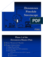 Downtown Pinedale Streetscape-PDF