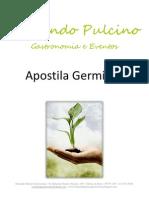 Apostila Fernando Pulcino Gastronomia - Germinação de Grãos