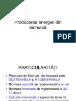 Producerea energiei din biomas-â coplet