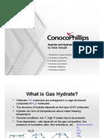 20100218_hydrates