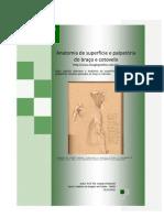 Anatomia de superfície e palpatória do braço e cotovelo