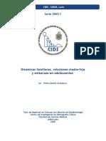 Dinamicas Familiares y Embarazo en La Adolescencia 2005