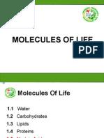 5.Nucleic Acid