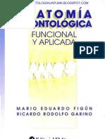 Anatomia Odontologica - Figun
