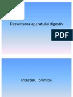 Dezvoltarea aparatului digestiv