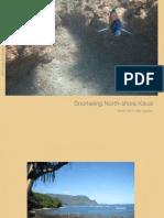 Snorkeling North-Shore Kauai 1.0 Web Version