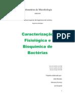 Relatorio de Microbiologia - Caracterização Fisiologica e Bioquimica de Bacterias