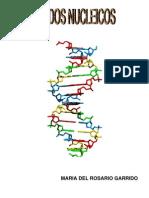 acidos nucleicos 2010-2011