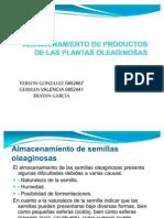 Almacenamiento de Los Sub Productos de Las Plantas Oleaginosas