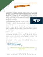 Proyecto Marketing - Hielitos de Sabores Daniel
