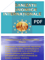 Organizatiile Economice Internationale