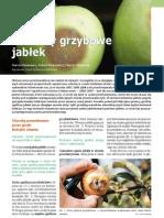 choroby jabłka