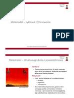 Metamodel - struktura, pytania, zastosowanie
