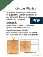 Nutrição das plantas