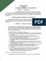 LSCA Constitution