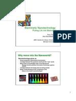 biomimicry-nanotechnology08-08