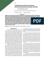 Analisis Kadar Pati Dan Serat Kasar Tepung Beberapa Kultivar Talas Colocasia Esculenta