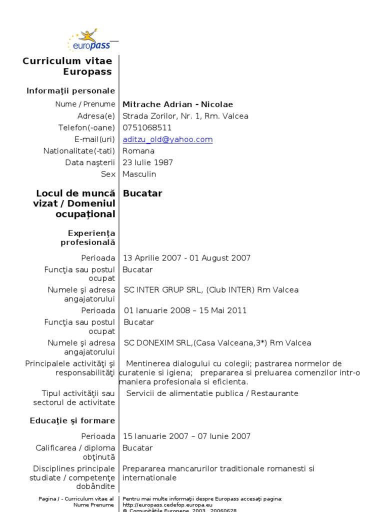 Fantastic curriculum vitae european format romana contemporary model cv curriculum vitae european romana yelopaper Images