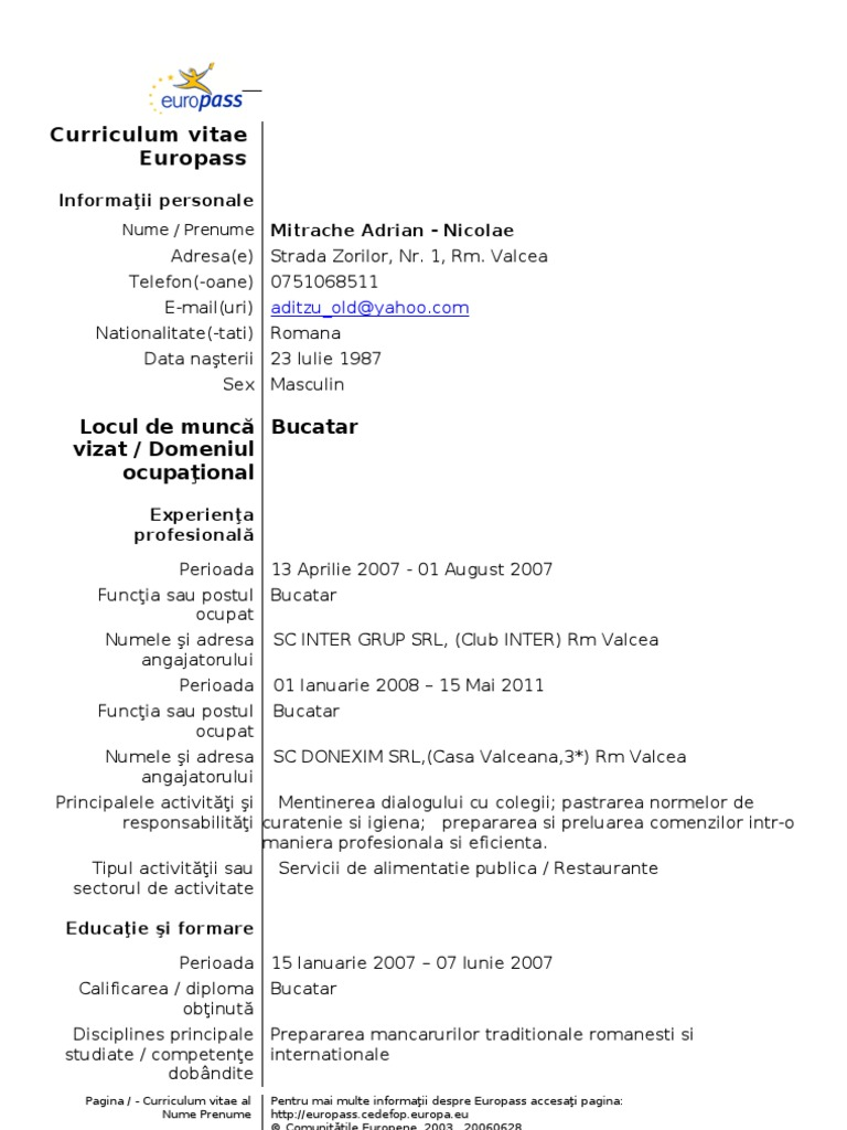 Model cv curriculum vitae european romana yelopaper Choice Image