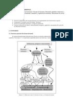 Bloque 3 Cap 8 Tema 1. Sistema Hormonal