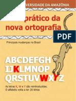 02022009-guia-ortografico