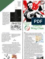 Algo sobre el Wing chun