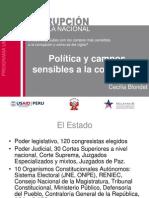 Campos sensibles a la corrupción y malas prácticas políticas
