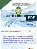 Perfil Profesional del Lic. Información de Control y Gestión