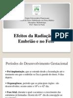 Aula 11 Efeitos da Radia+º+úo no Em