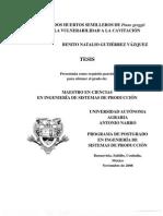 DISEÑO DE DOS HUERTOS SEMILLEROS DE Pinus greggii Engelm. Y LA VULNERABILIDAD A LA CAVITACIÓN