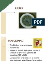 penicilinas wendy