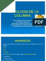 64[1]. Semiologia Del Sistema Osteoarticular II-Columna Ppt Share)