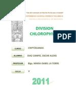 chlorophytas